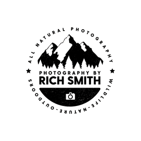 Photography by Rich Smith - Yorkshire Wedding & Outdoor Photographer
